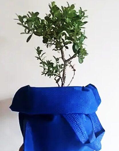 bolsos_ecologicos_peru